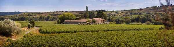 Huidige domein van Paul Mas - Chardonnay IGP Domaine Paul Mas